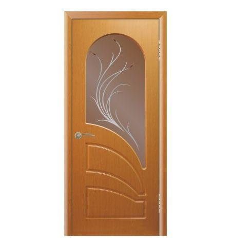 фото: Дверь Арена