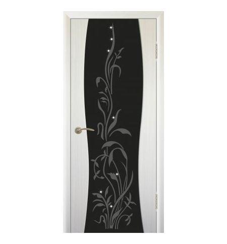 фото: Дверь Сириус с рисунком